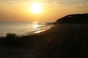 coucher de soleil plage Vert bois